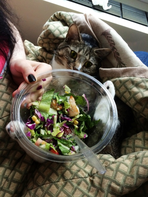 luna_holds_salad