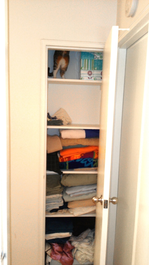 luna_in_linen_closet