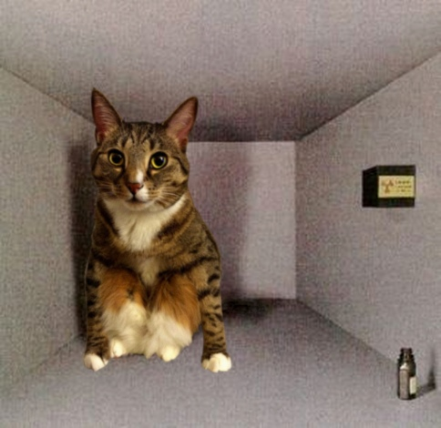 schrod_cat
