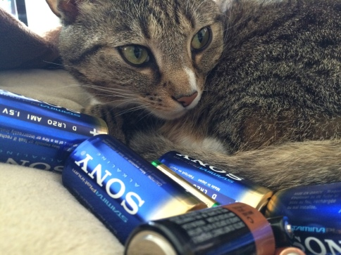 Luna with Sony batteries