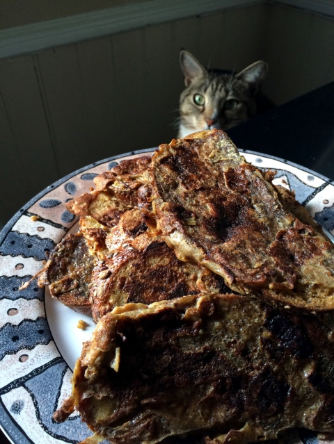 Luna with french toast