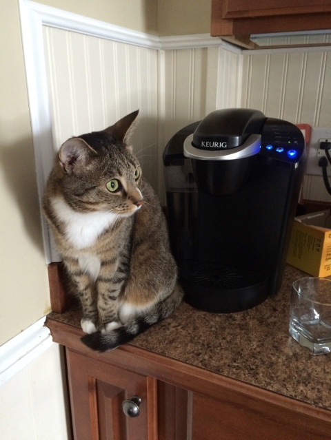 Luna wide-eyed near coffee machine