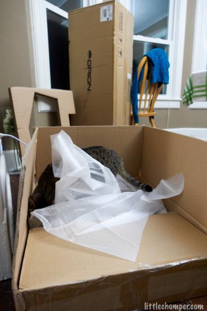 Luna investigating telescope box beneath packing material
