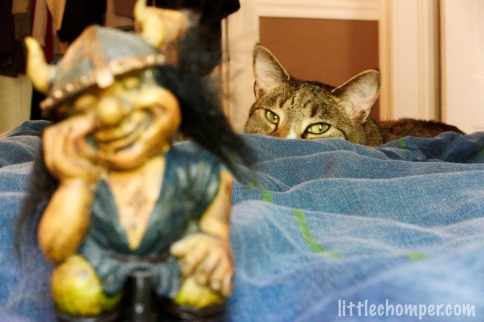 Luna peering angrily behind defocused troll