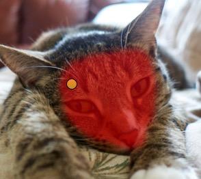Mask on the Luna face