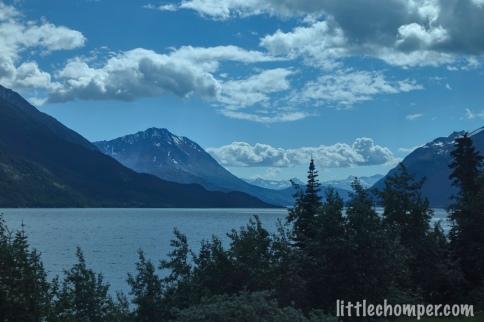 Alaska bus tour in Yukon view
