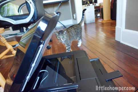 Luna approaching printer