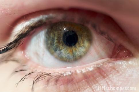 Aliona eye macro