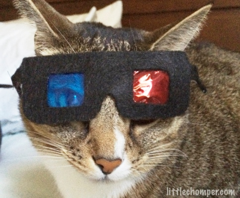 Luna looking at camera with 3D glasses